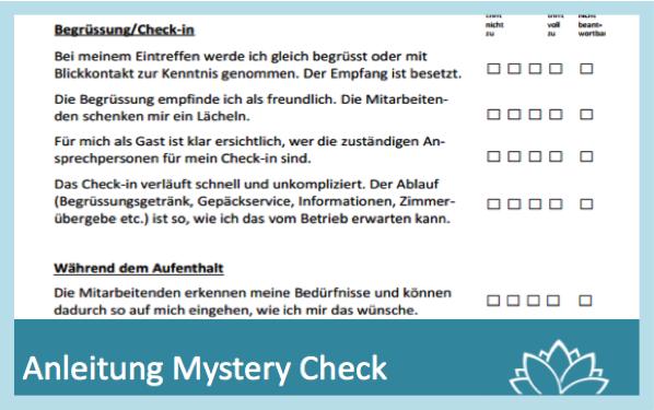 Mystery Check blau_zum Tool