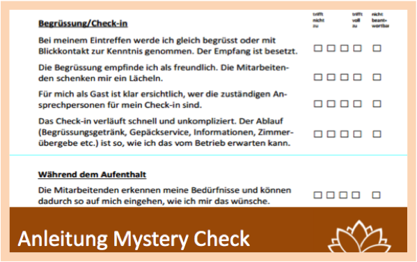 Mystery Check_zum Tool